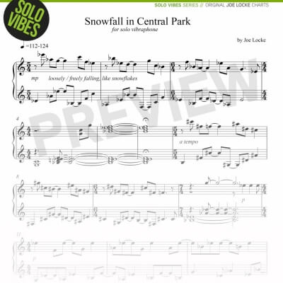 Joe Locke Solo Vibraphone - Snowfall In Central Park